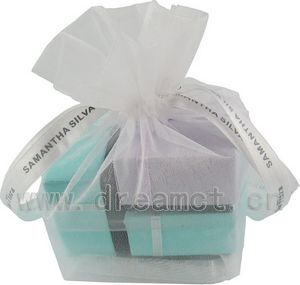 Organza Bag with Square Base and Ribbon Printed