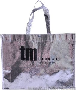 Silver Tote Bag with Snap